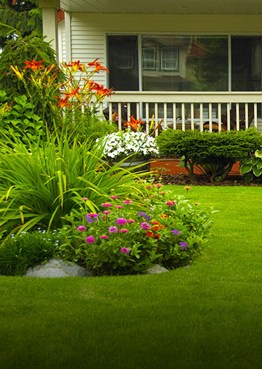 East Falls Landscape Design